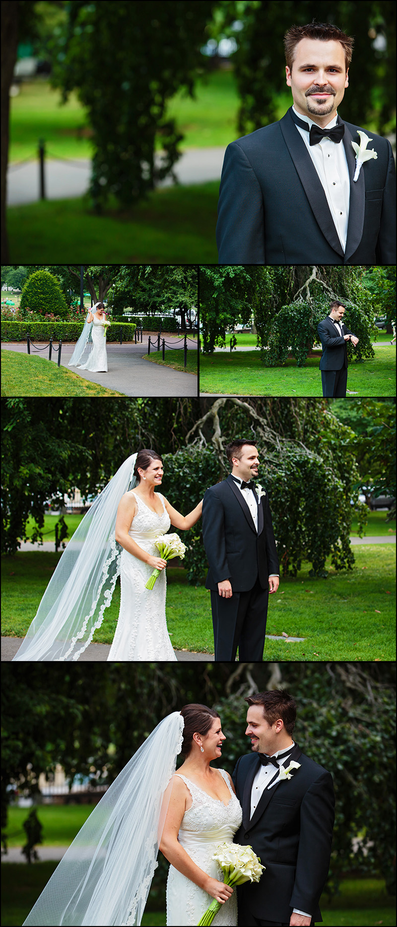 WEDDING PHOTOS BOSTON PUBLIC GARDENS